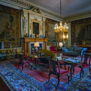 Dunham Park Drawing Room by Stuart Ogden Highly Commended in Record Section