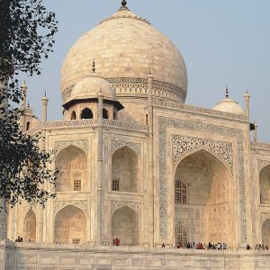 Taj Mahal by Gordon Armstrong Very Highly Commended in Record Section