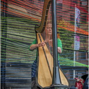 Harpist by Stuart Ogden, scored 19