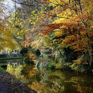 Autumn on the Canal by Gordon Armstrong, scored 16