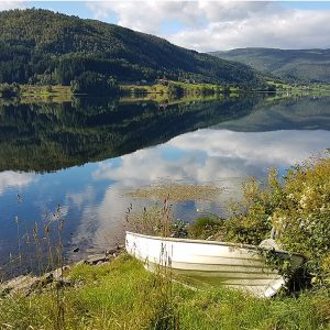 Norwegian Reflections by Sue Shaw, scored 17