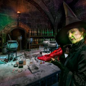 Wicked Witch of the West by Gerry Gentry Very Highly Commended in Creative