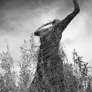 Wicker Woman by Dean Padley Score: 18