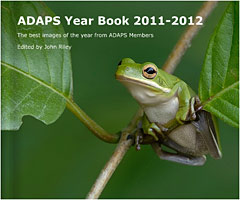 Buy the ADAPS 2011/ 2012 yearbook