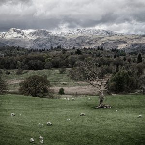 Ambleside by Sue Riley, Landscape Print, Highly Commended
