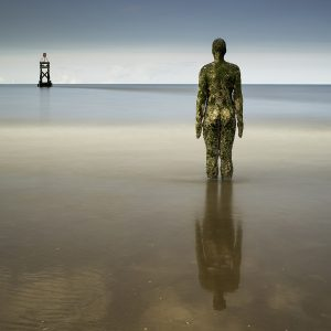 Watching and Reflecting by Alan Kemp, Open Colour Print, Very Highly Commended