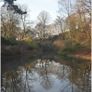 On Reflection by Mike Aspinall, 14