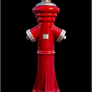 Modern Fire Hydrant, Germany by Mel Barnes, Record, HC