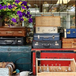 All Packed but Nowhere to go....by Sue Shaw, SILVER AWARD