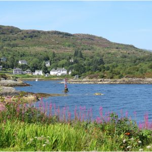 Entrance to Tarbert Harbour by Anne Smith, 15